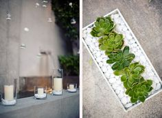 succulent arrangement on the right