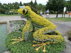 Virtual Garden: Mosaiculture Exhibition