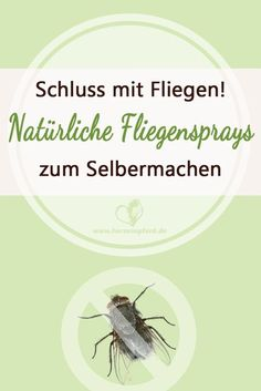Endlich Schluss mit Fliegen – Warum Du keine chemischen Fliegensprays benutzen… Finally, stop flying – why you should not use chemical fly sprays and what the better alternative looks like! Fly Spray, Horse Riding Tips, Horseback Riding, Dressage, Animal Shelter, Animals And Pets, Fur Babies, Horses, Sprays
