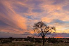 My Land, South Africa, In This Moment, Celestial, Sunset, Cape, Outdoor, Sunsets, Mantle