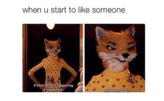 When you start to like someone
