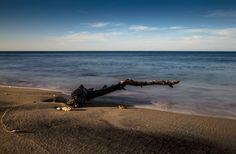 Sassi, rami che arrivano sulle spiagge trasportati dalle maree e rimangono li a catturare il trascorrere e il moto delle onde