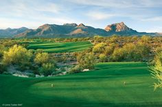 WeKoPa (Saguaro and Cholla Courses), AZ - I could play these over and over again.  Pure golf heaven for me.