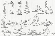 Targeted Stretching Exercises fitness