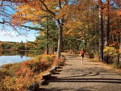 I love the few weeks of running in the fall when all the leaves are turning. Makes me forget I'm on a long run.