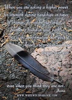 finding a feather in your path. angels are present and are always near you, even when you think they are not. Feather Signs, Feather Quotes, Feather Art, Feather Tattoos, Art Tattoos, Native American Wisdom, Native American Proverb, Angels Among Us, Spirit Guides