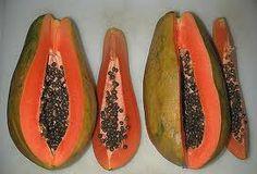 papayuela fruta