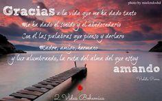 Frases de Violetas Parra
