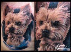 Ink Man Tattoo Studio Budapest #inkmantattoo #budapesttattoo #tattoo #tattoos #tetoválás #colortattoo #blacktattoo #dogtattoo Budapest, Man, Tattoo Artists, My Love, Tattoos, Dogs, Animals, My Boo, Animais