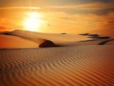 desert-790640__340.jpg (453×340)