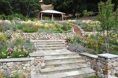 Lafayette Hillside Pavillion - eclectic - landscape - san francisco - by Huettl Landscape Architecture
