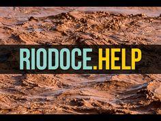 Voluntários | Rio Doce Help!
