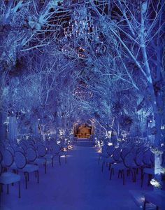 Enchanted forest wedding...... Totally want to do this.. As long as no one I know STEALS it....