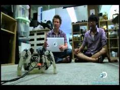 Documentário: O Futuro em 2111 - Mundo Inteligente (Completo e Dublado) ...