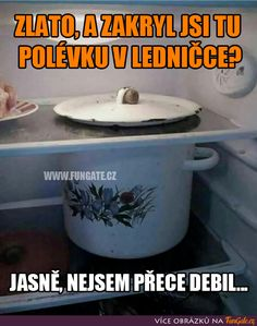 Zlato, a zakryl jsi tu polévku v ledničce? Jokes Quotes, Memes, Haha, Funny, Husky Jokes, Ha Ha, Animal Jokes, Meme, Jokes
