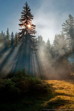 """""""Sunbeams"""" by Evgeni Dinev Photography (Golyam Beglik, Rhodope Mountains, Bulgaria) www. Most Beautiful Pictures, Cool Pictures, Cool Photos, Beautiful World, Beautiful Places, Natural World, Beautiful Landscapes, Science Nature, The Great Outdoors"""