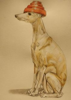 I said Whippet. Whippet good. :) I always get Whip It stuck in my head whenever I see a whippet.