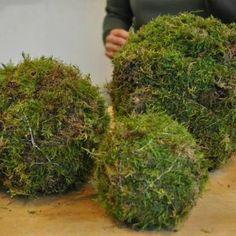 Kerststukje maken: feestelijke bollen van mos - Christmaholic.nl