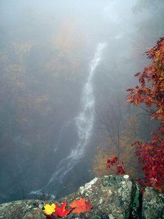 shenandoah national park | Whiteoak Canyon Falls at Shenandoah National Park