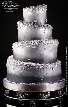 Holy Cow! Fabulous silver theme cake