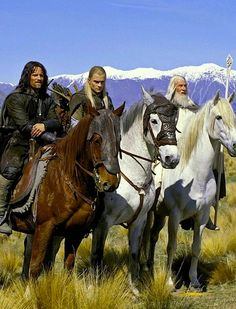 All on horses posed nobly while Gimli peeks out from behind Legolas. :P   Perfect  scene.