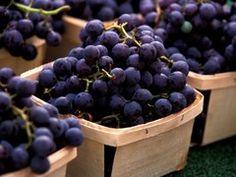 5 concord grape recipes