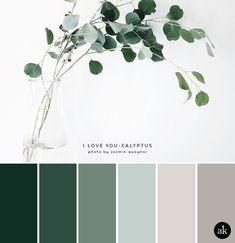 a eucalyptus-inspired color palette a eucalyptus-inspired color palette // green gray natural tones The post a eucalyptus-inspired color palette appeared first on Wandgestaltung ideen. Nature Color Palette, Green Colour Palette, Green Colors, Colours, Green Color Schemes, Interior Colour Schemes, Silver Color Palette, Color Combinations, Color Tones