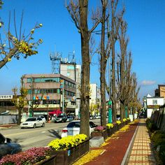 Pyeongtaek, South Korea. Our favorite place to stroll. Bus #22 takes you there alive.