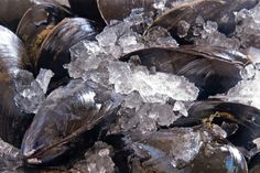 Simply Steamed Island Blue Mussels with Three Different Flavours Blue Mussel, Island Blue, Curry Powder, Mussels, Eating Well, Favorite Recipes, Orange Juice, 1 Cup, Onion