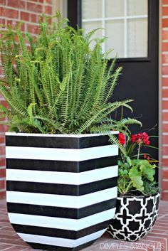Dimples and Tangles: DIY OUTDOOR PLANTER IDEAS