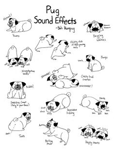 Take a moment to appreciate the good and the not so good (e.g., toots) sounds your pug makes!(via Bah Humpug: Pug Sound Effects)