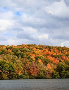 Aller au parc du Mont Saint Bruno pour profiter des belles couleurs de l'automne Bruno, Parc National, Destinations, Saints, Country Roads, Nature, Autumn, Beautiful, Vacation