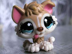 Littlest Pet Shop 1013 Husky Puppy Dog Brown Tan Cream /w Blue Eyes Dog Polar