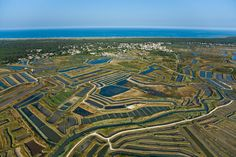 France, Poitou-Charentes, Charente-Maritime (17), Île d'Oléron, claires entre Ors et Grand-Village-Plage (vue aérienne)