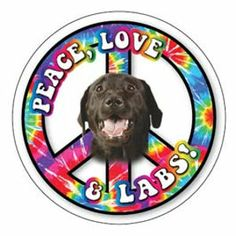 "Peace, Love, & Labs round 5"" magnet ~ your choice of black, chocolate, or yellow lab designs..."