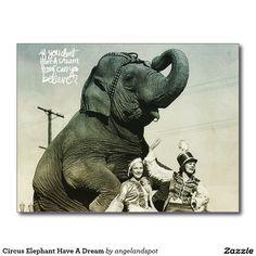 Circus Elephant Have A Dream Postcard
