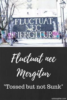 WHAT IS THE MEANING OF FLUCTUAT NEC MERGITUR | solosophie
