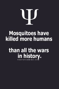 Looks like there should be a war on mosquitos to curb their taste in humans. Psychology Says, Psychology Fun Facts, Psychology Quotes, Wtf Fun Facts, True Facts, Random Facts, Fact Quotes, Life Quotes, Quotes Quotes
