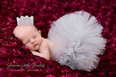 Sweet Platinum Princess Tutu Set From The Sweet Baby Royalty Newborn Tutu And Tiara Collection Stunning Unique Newborn Photo Prop. $45.00, via Etsy.
