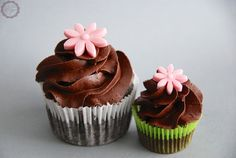 Chocolate Cupcakes | MakeUrCake
