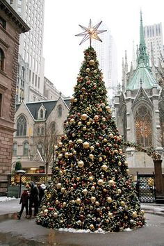 Kids from one to 92 will enjoy gazing up at Manhattan's prized perennials dressed with millions of glimmering lights for the season. Christmas In The City, Christmas Feeling, New York Christmas, Cozy Christmas, Christmas Is Coming, Outdoor Christmas, Christmas Photos, Christmas Lights, Christmas Holidays