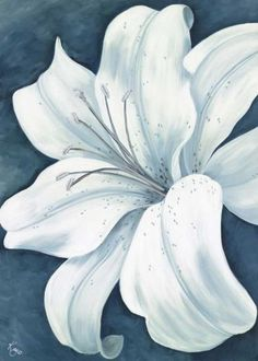 Art Print: Stargazer Lilies Wall Art by Kaye Lake by Kaye Lake : Easy Flower Painting, Lily Painting, Acrylic Painting Flowers, Watercolor Flowers, Painting & Drawing, Flower Art, Watercolor Paintings, Easy Flowers To Paint, Lilies Drawing
