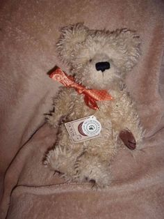 "10""  Boyds bear teddy bear collectible  W tag  Dutch P. Beansford scruffy cute"