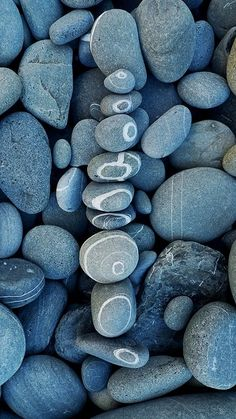 Beach Stones | by wild goose chase A rock with an unbroken ring is a love rock...