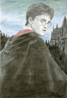 Harry Potter Drawing. Harry Potter Drawings, Harry Potter Art, Harry Potter Memes, Harry Potter Birthday, Hogwarts, Birthday Ideas, Art Drawings, Manga, Tv