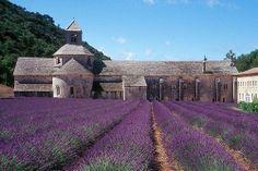 Abbaye Notre-Dame de Sénanque. Monastère cistercien France