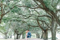 Adam + Chrissy's light, bright and airy downtown Charleston engagement photos at The Battery Park / White Point Gardens!   Aaron and Jillian Photography