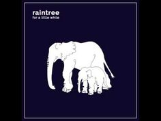 Raintree - For A Little While (Full Album)