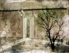 Päivi Hintsanen: A Tree in A Room, 2009
