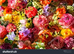 Find Colorful Beautiful Flower Wall stock images in HD and millions of other royalty-free stock photos, illustrations and vectors in the Shutterstock collection. Thousands of new, high-quality pictures added every day. Flower Wall, Beautiful Flowers, Photo Editing, Floral Wreath, Royalty Free Stock Photos, Colorful, Illustration, Garden, Room